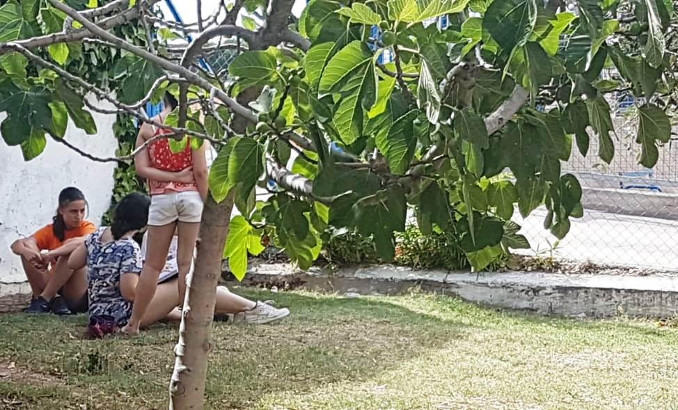 Campamento de Verano 2019-08